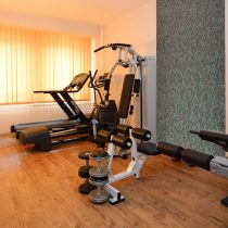 02_Zepter-Hotel-Drina_Basta_Gym-Sauna